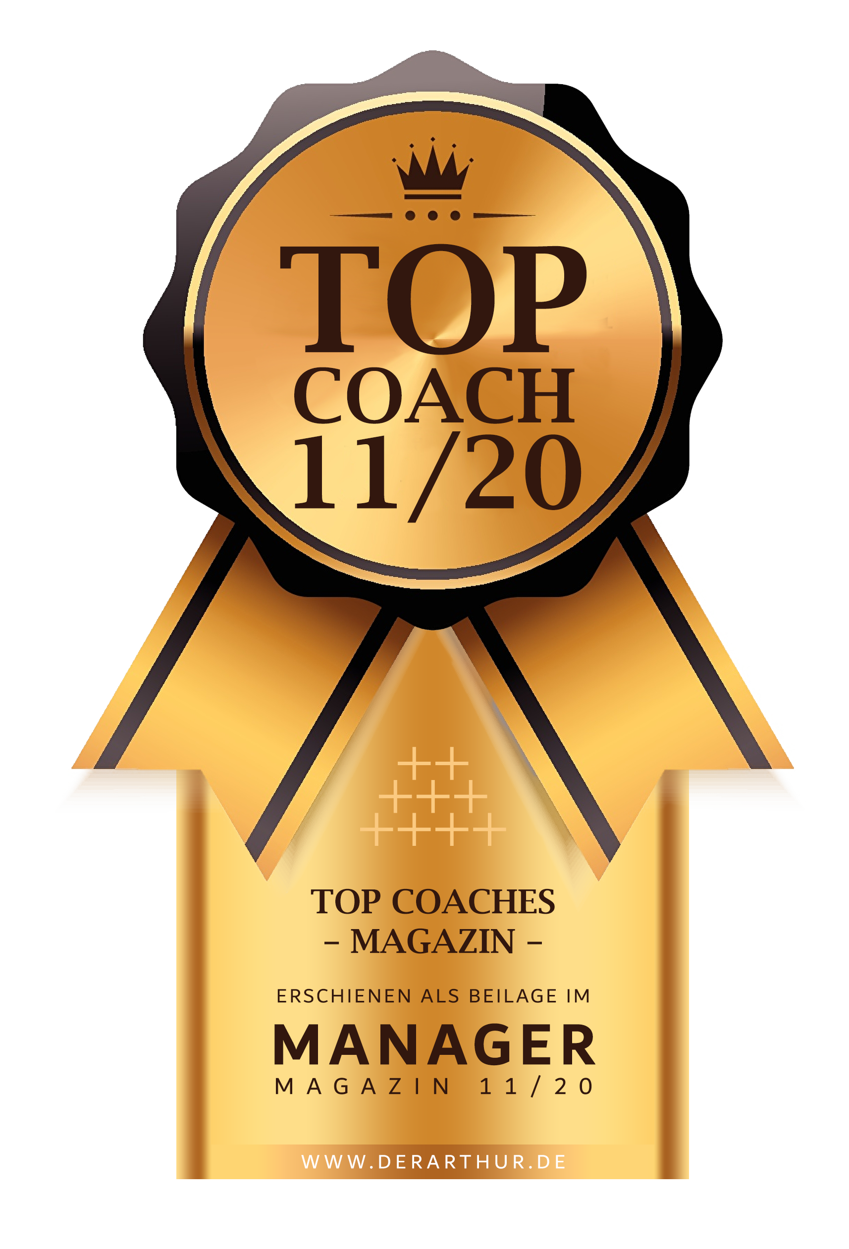Sigel Top Coaches Manager Magazin